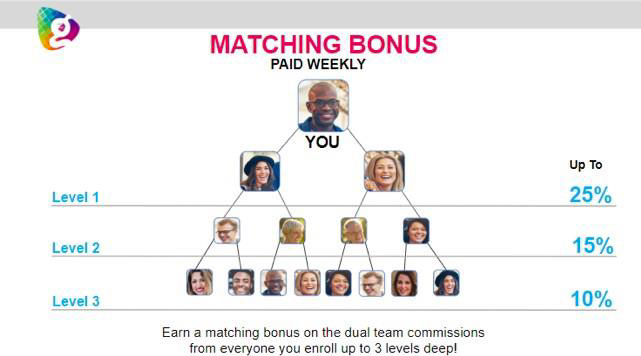 Globallee Compensation Plan Dual Team Matching Bonus