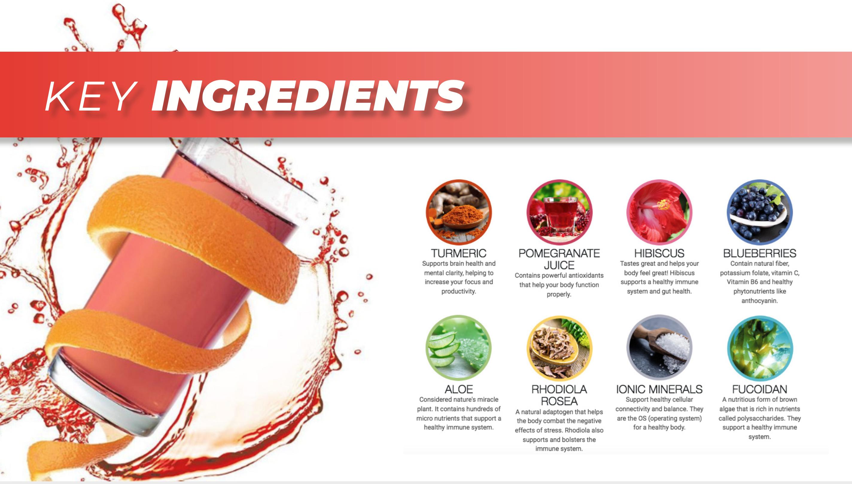 Globallee TAKA Energy Drink | Call 919-624-0544